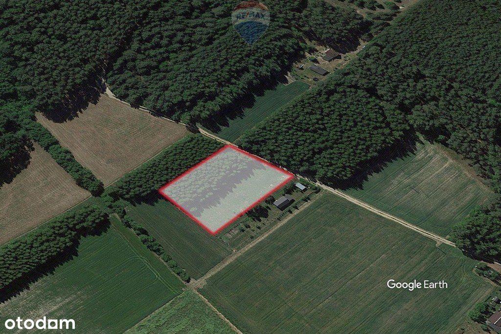 Działka rolna z Wz 3000 m²-Kromolin Stary (Szadek)