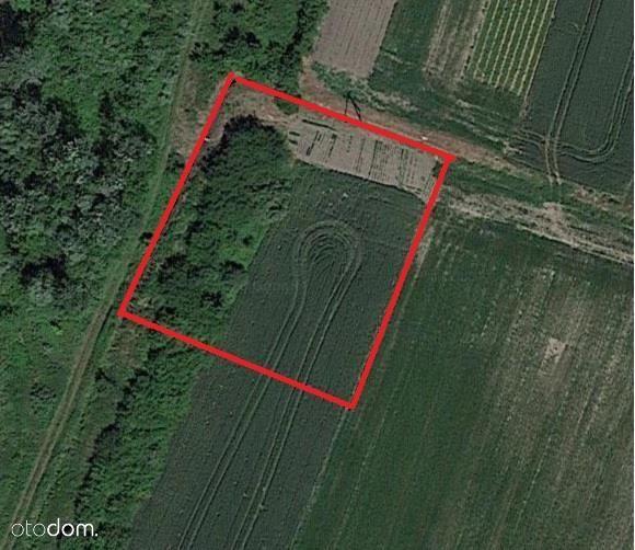 Działka, 1 600 m², Kryniczno