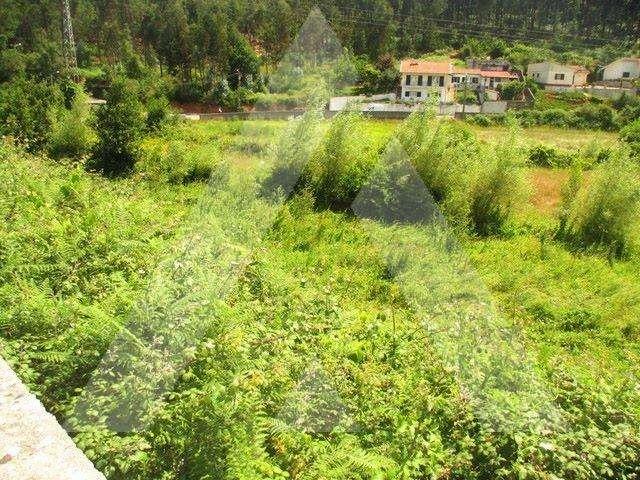 Terreno para comprar, Macieira de Sarnes, Oliveira de Azeméis, Aveiro - Foto 3