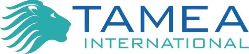 Agência Imobiliária: Tamea International