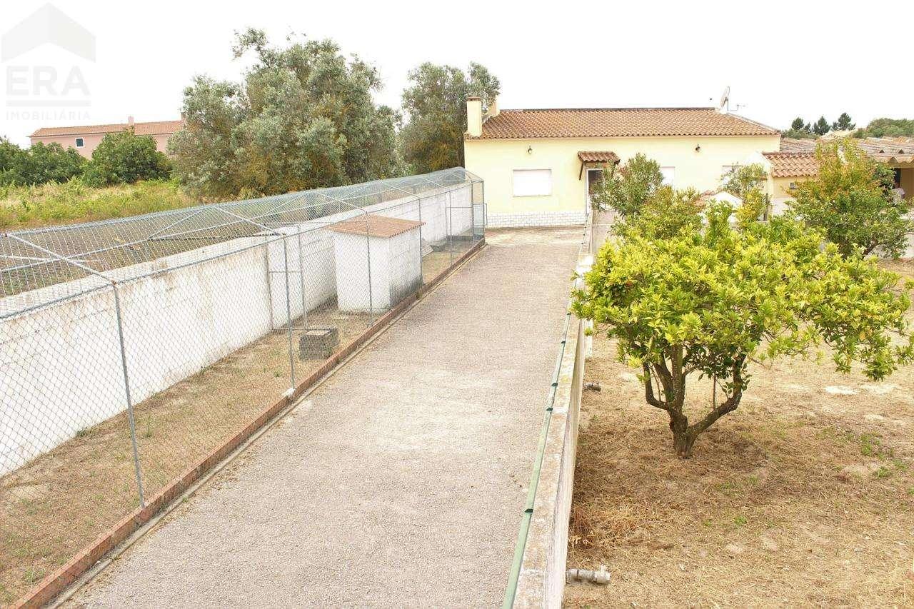 Terreno para comprar, Gâmbia-Pontes-Alto Guerra, Setúbal - Foto 25