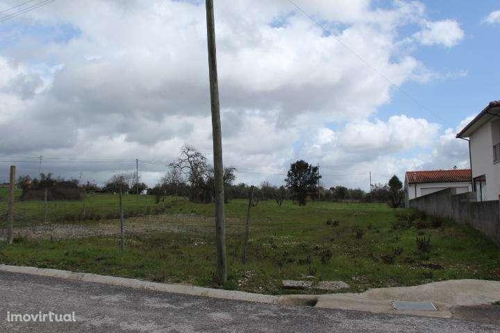 Terreno para comprar, Mortágua, Vale de Remígio, Cortegaça e Almaça, Viseu - Foto 8