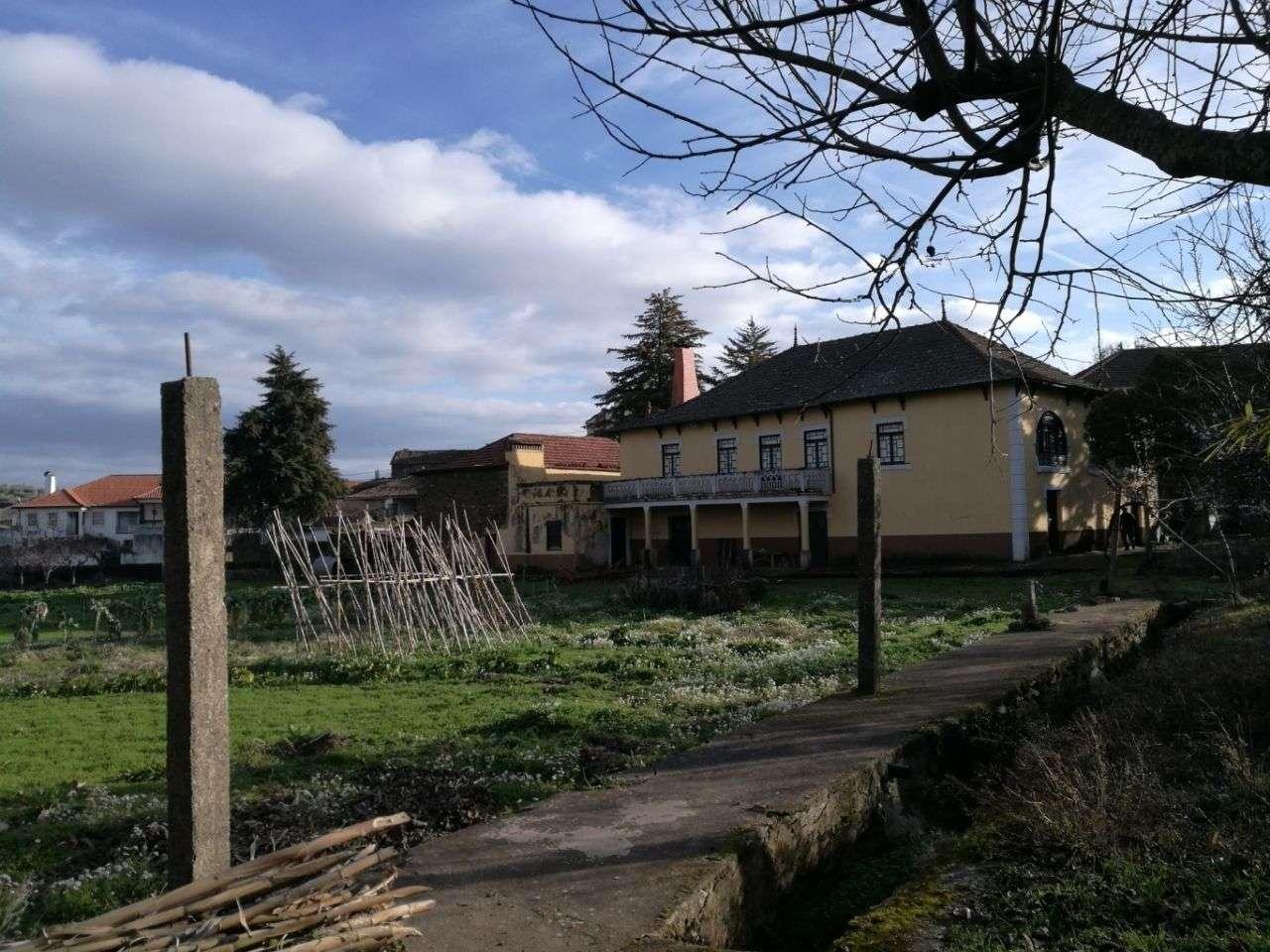 Quintas e herdades para comprar, Peredo, Macedo de Cavaleiros, Bragança - Foto 4