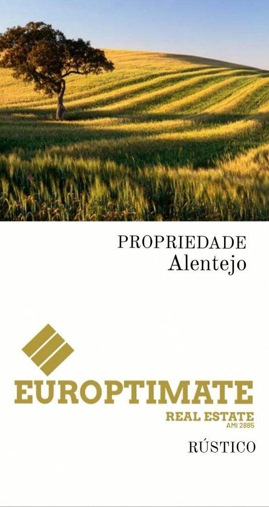Propiedade silvo pastoril de 151 ha com área de construção c/ armazém