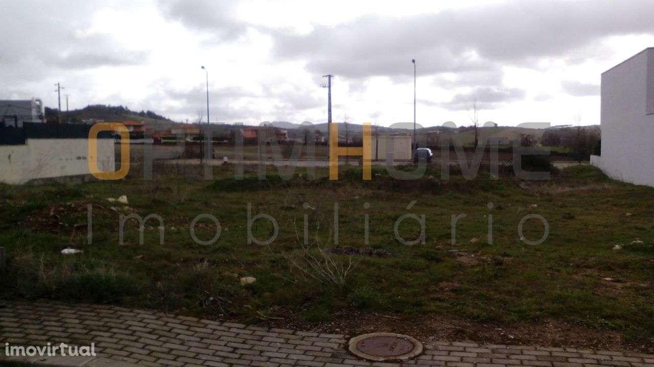 Terreno para comprar, Mogadouro, Valverde, Vale de Porco e Vilar de Rei, Mogadouro, Bragança - Foto 3