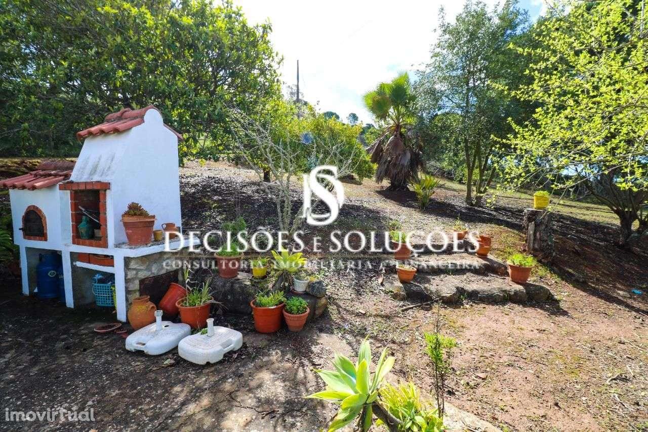 Quintas e herdades para comprar, Santiago do Cacém, Santa Cruz e São Bartolomeu da Serra, Santiago do Cacém, Setúbal - Foto 4