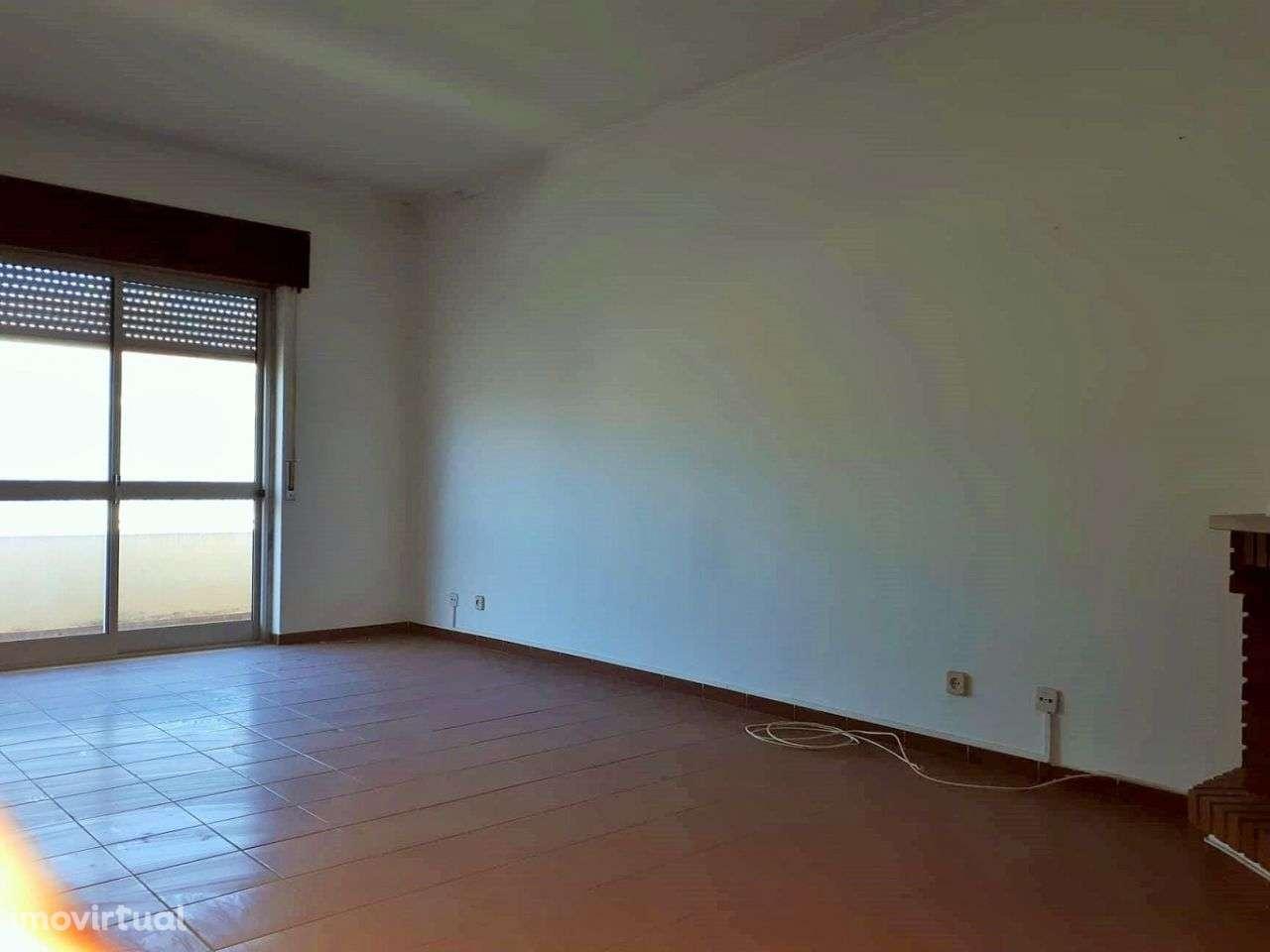 Apartamento para comprar, Rua Leonardo da Vinci, São João Baptista - Foto 4