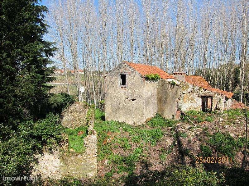 Terreno para comprar, Coz, Alpedriz e Montes, Leiria - Foto 19