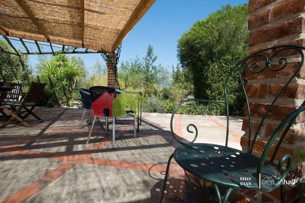 Quintas e herdades para comprar, Azinheira dos Barros, Setúbal - Foto 11