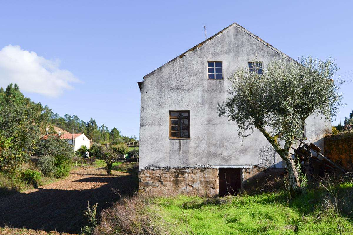 Quintas e herdades para comprar, São Pedro do Esteval, Castelo Branco - Foto 6