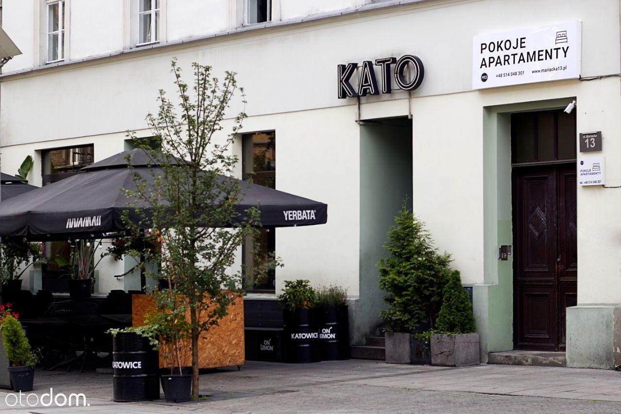 10 kawalerek w centrum Katowic wynajmę
