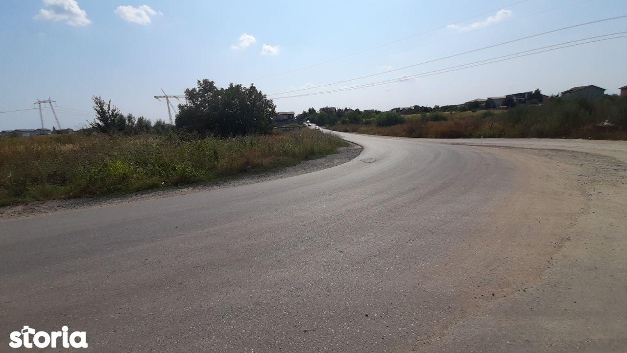 Loturi terenuri intravilane str. Bistrita / Codrului in Comuna Berceni