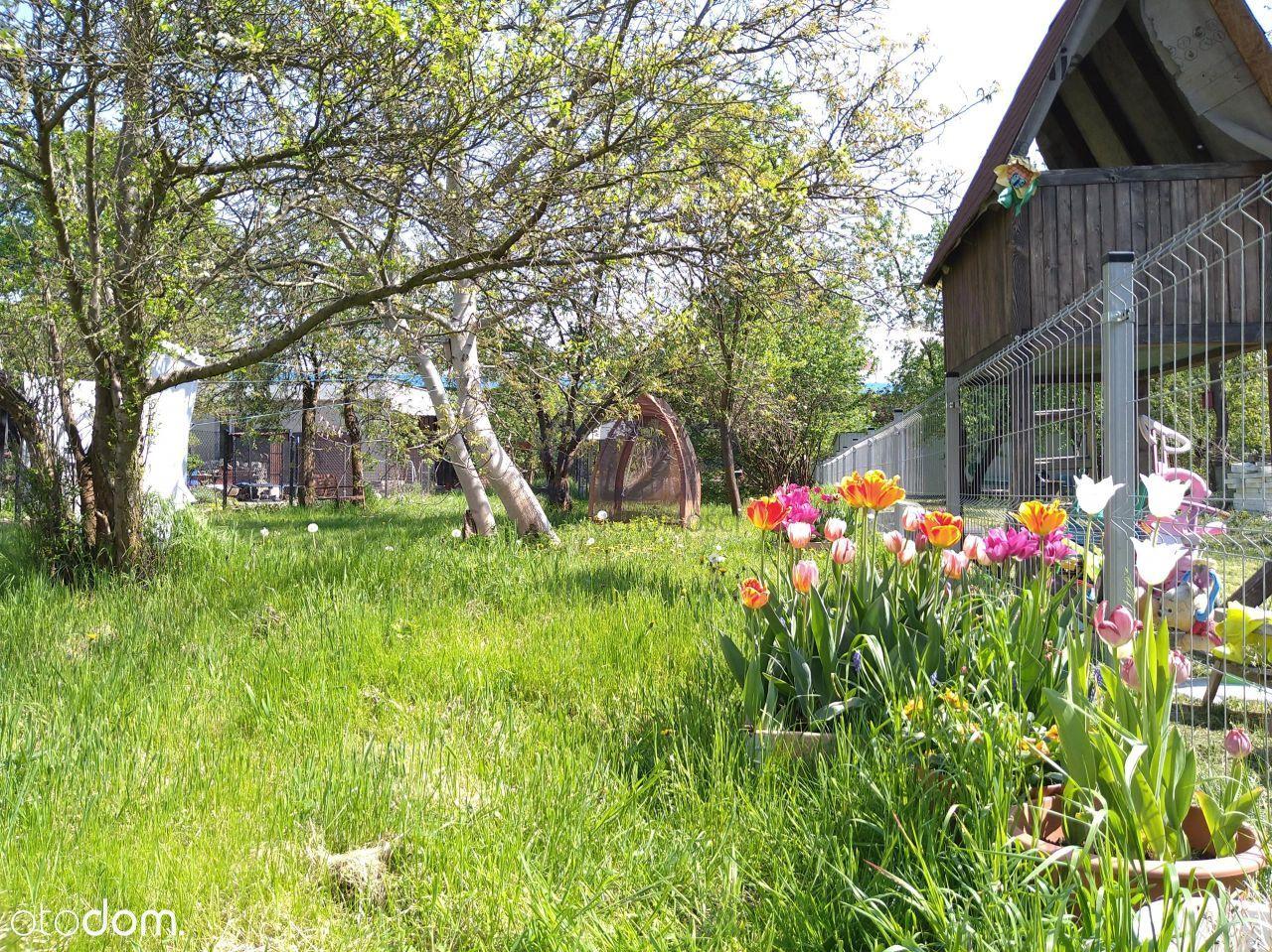 Nowa Cena/Bezczynszowe/duży ogród w mieście!