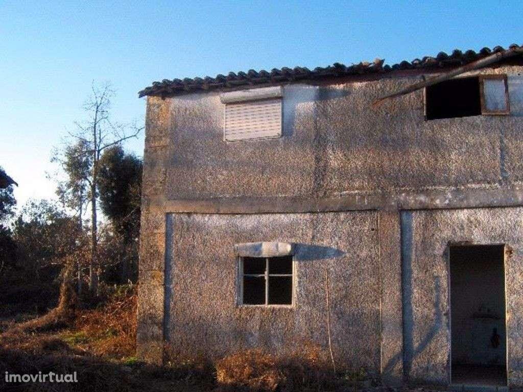 Quintas e herdades para comprar, Palmeira, Braga - Foto 1