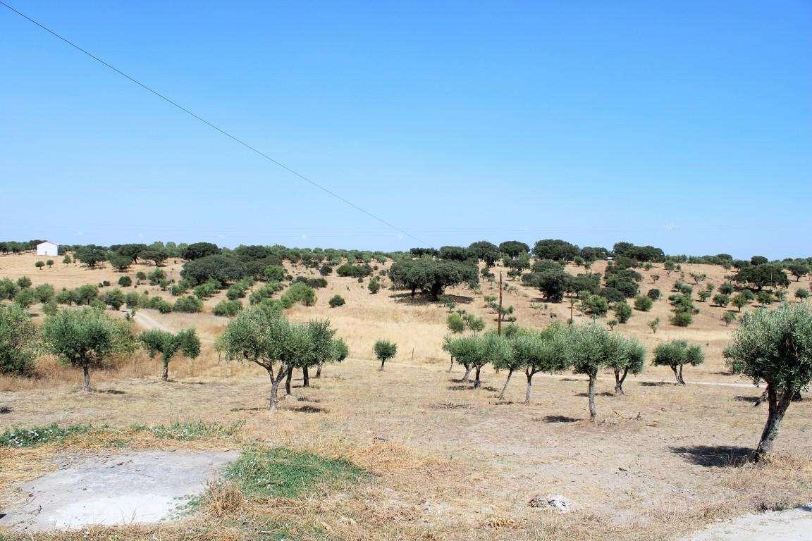 Quintas e herdades para comprar, Santo António (Capelins), Évora - Foto 41