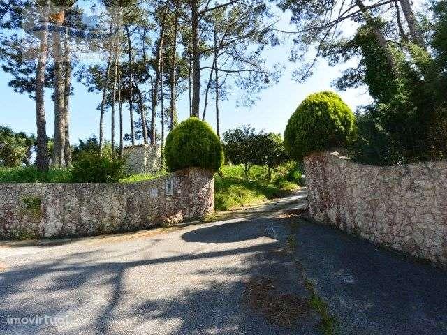 Quintas e herdades para comprar, Alfeizerão, Leiria - Foto 19