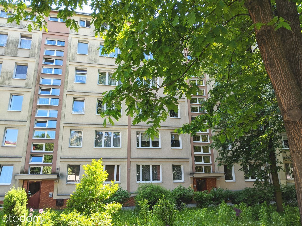 3 POK, blisko CENTRUM, balkon, zielen, Tauron Aren