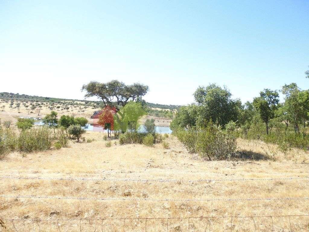 Quintas e herdades para comprar, Almodôvar e Graça dos Padrões, Beja - Foto 9