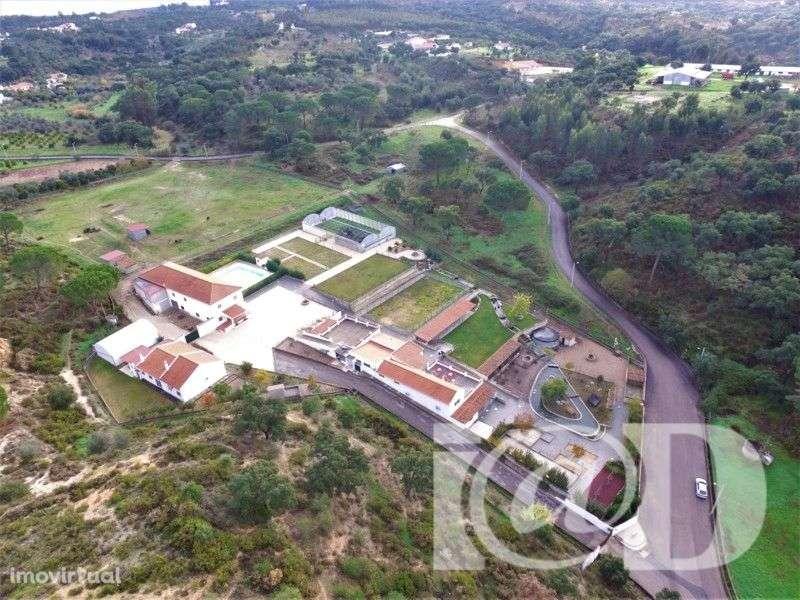 Quintas e herdades para comprar, Chamusca e Pinheiro Grande, Santarém - Foto 1