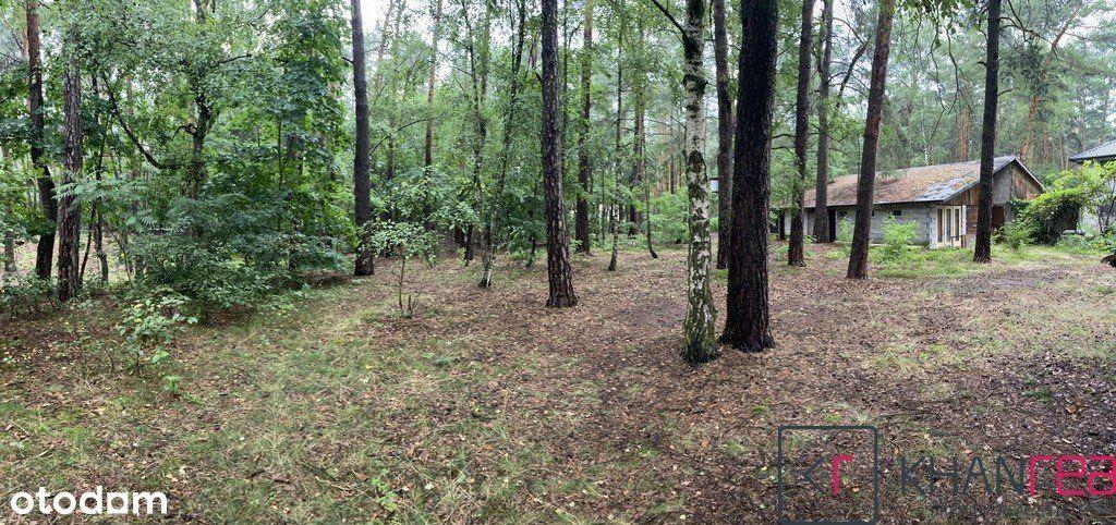Działka pod lasem w Józefowie