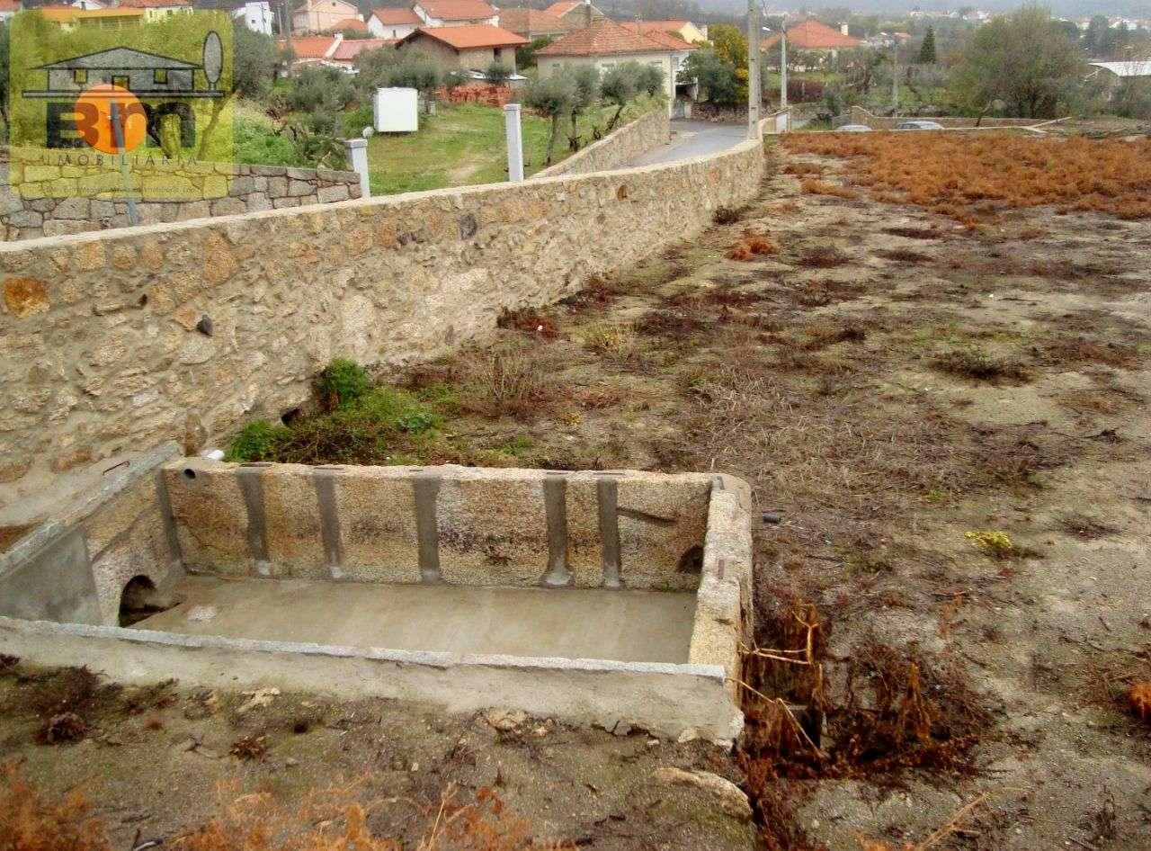 Quintas e herdades para comprar, Almaceda, Castelo Branco - Foto 1