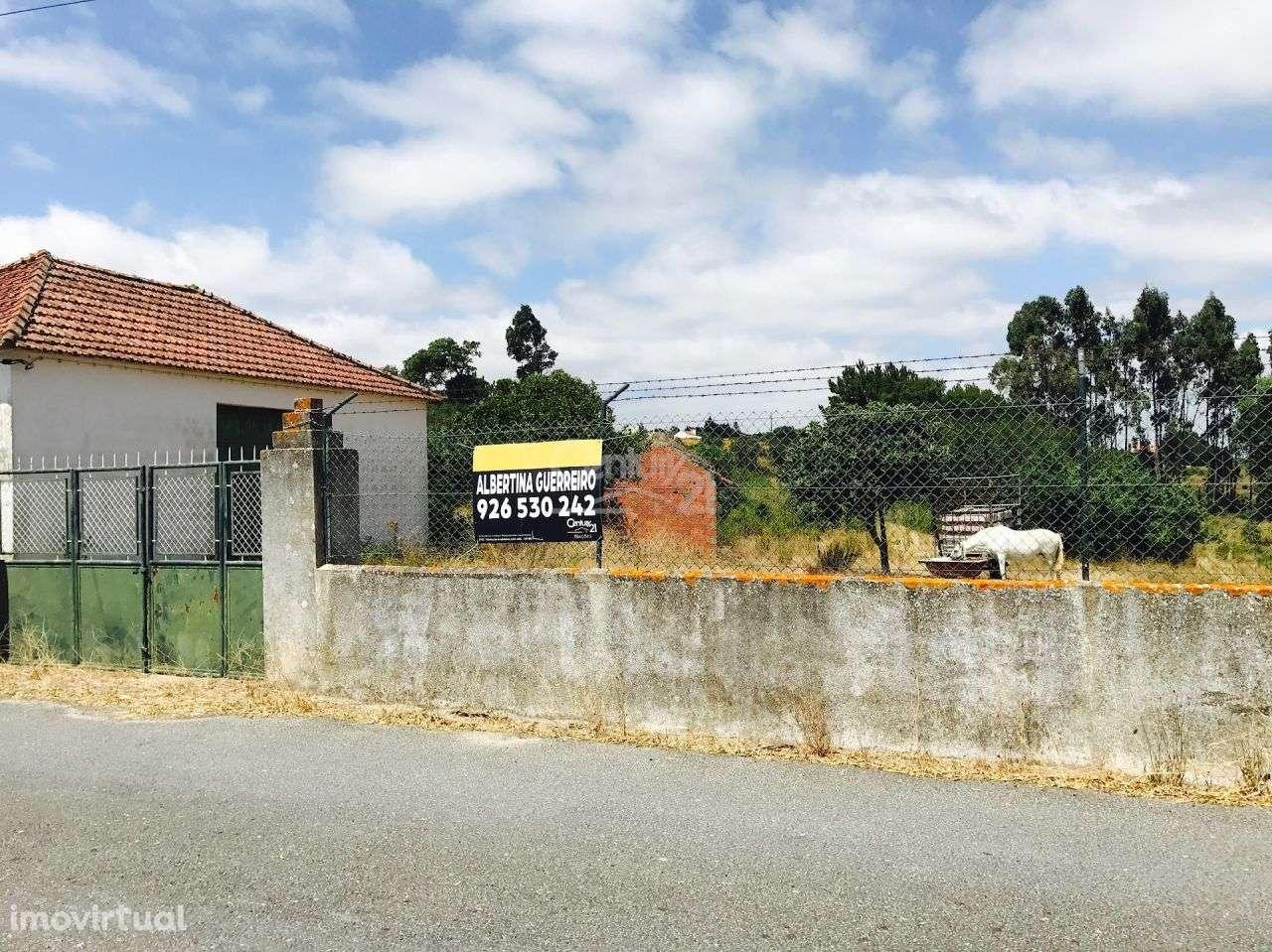 Quintas e herdades para comprar, Ereira e Lapa, Santarém - Foto 1