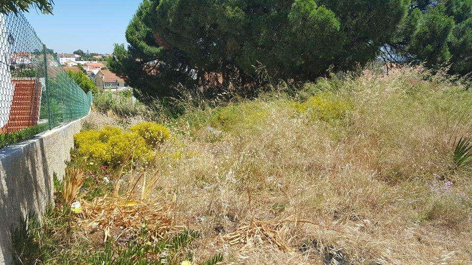 Terreno para comprar, Charneca de Caparica e Sobreda, Almada, Setúbal - Foto 4
