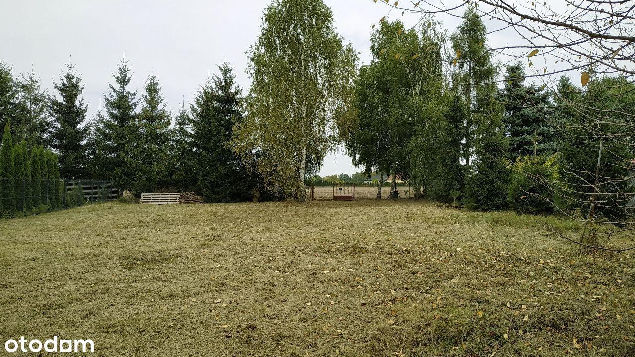 ok Aleksandrowa Łodzkiego, Nowy Adamów budowlana