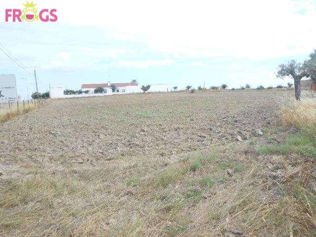Terreno para comprar, Campo e Campinho, Évora - Foto 2