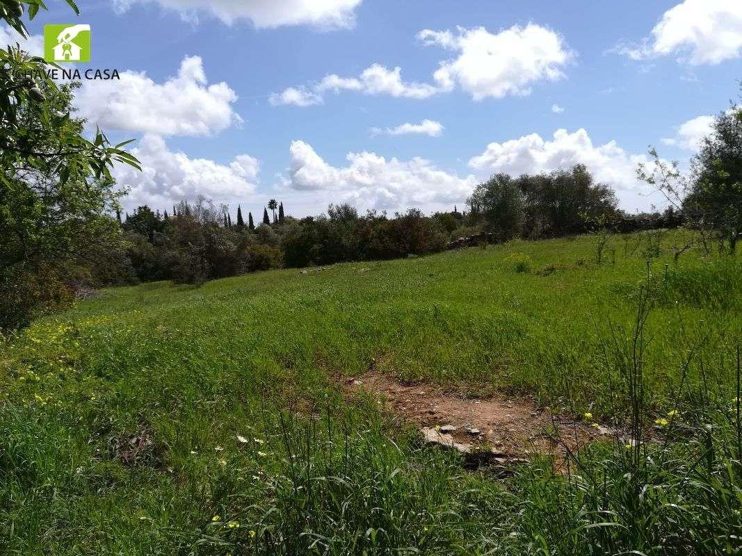 Terreno para comprar, Moncarapacho e Fuseta, Faro - Foto 9
