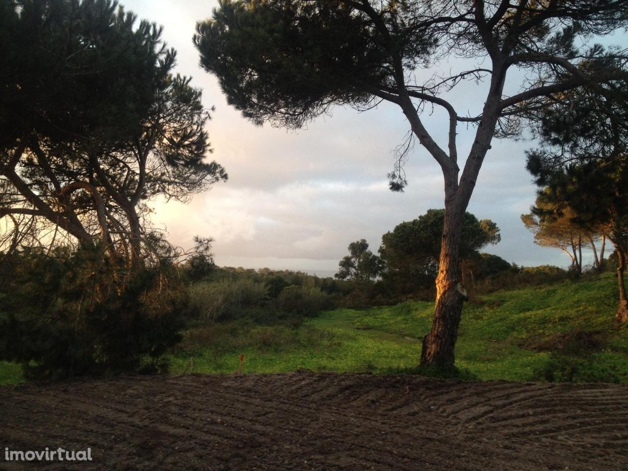 Terreno para comprar, Castelo (Sesimbra), Sesimbra, Setúbal - Foto 23