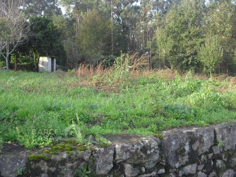Terreno para comprar, Aborim, Braga - Foto 3