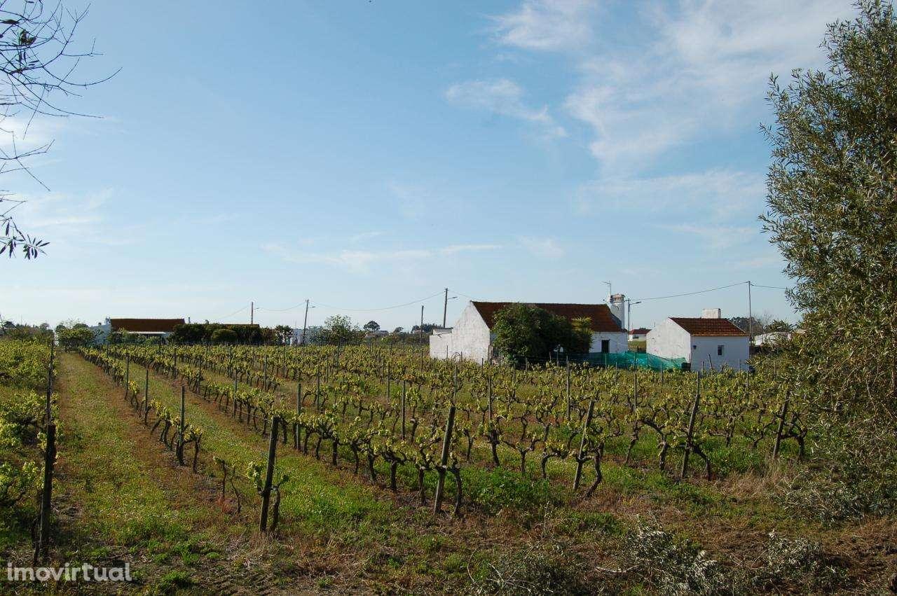 Quintas e herdades para comprar, Pinhal Novo, Setúbal - Foto 8