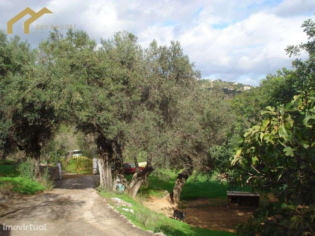 Quintas e herdades para comprar, Almancil, Loulé, Faro - Foto 16