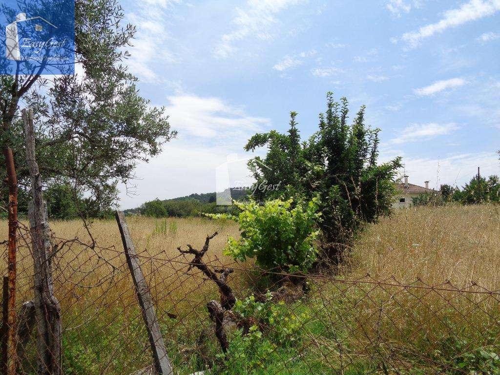 Terreno para comprar, Orgens, Viseu - Foto 3