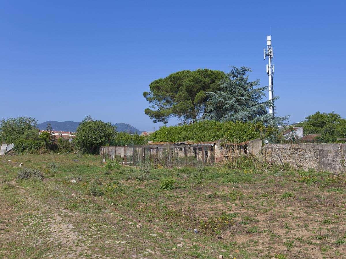 Quintas e herdades para comprar, Algueirão-Mem Martins, Lisboa - Foto 8