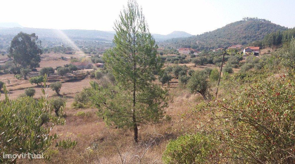 Terreno com vista sobre a natureza em Ansião