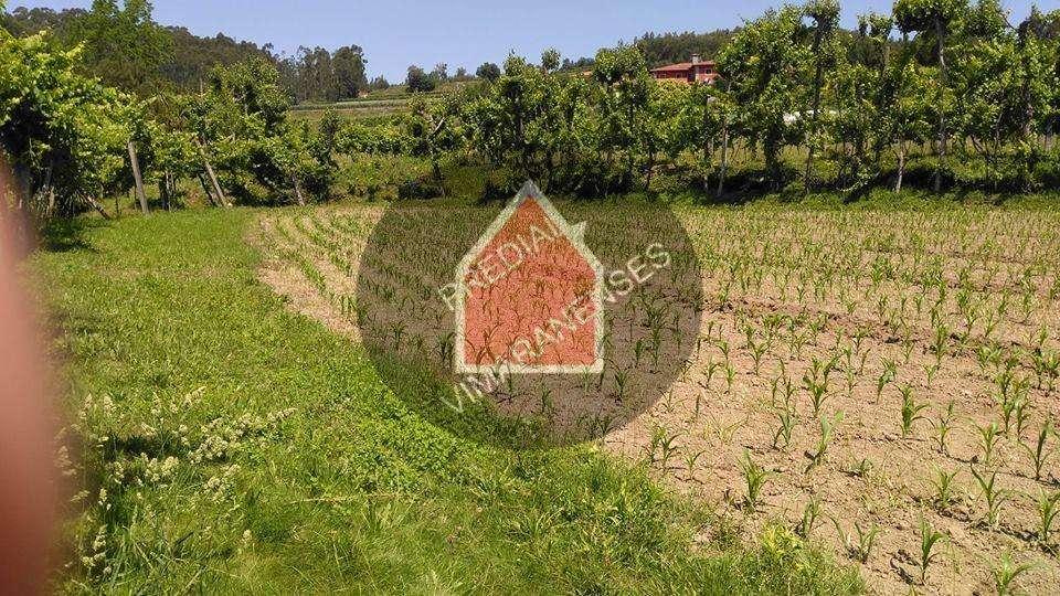 Quintas e herdades para comprar, Selho São Lourenço e Gominhães, Braga - Foto 10