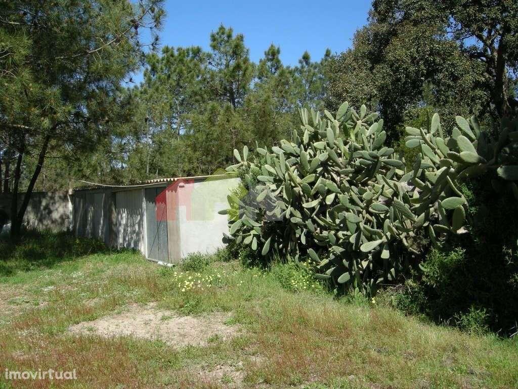 Quintas e herdades para comprar, Santo André, Setúbal - Foto 10