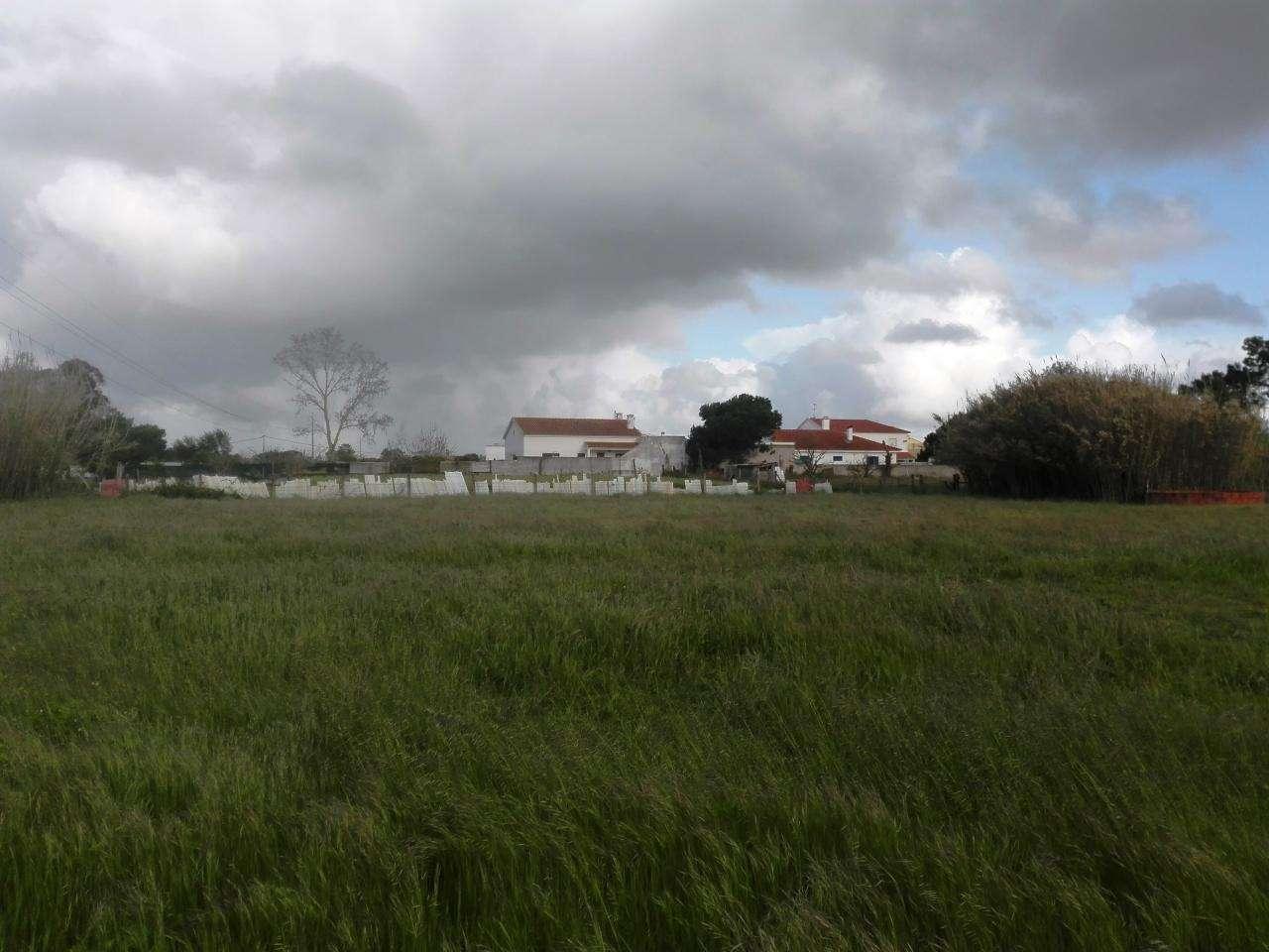 Quintas e herdades para comprar, Quinta do Anjo, Setúbal - Foto 9