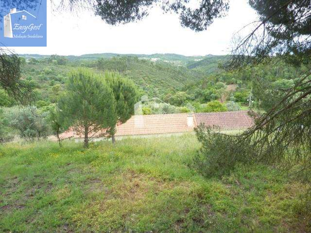 Quintas e herdades para comprar, Martinchel, Abrantes, Santarém - Foto 30