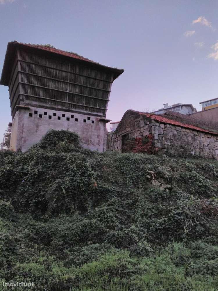 Quintas e herdades para comprar, Oliveira do Douro, Vila Nova de Gaia, Porto - Foto 40