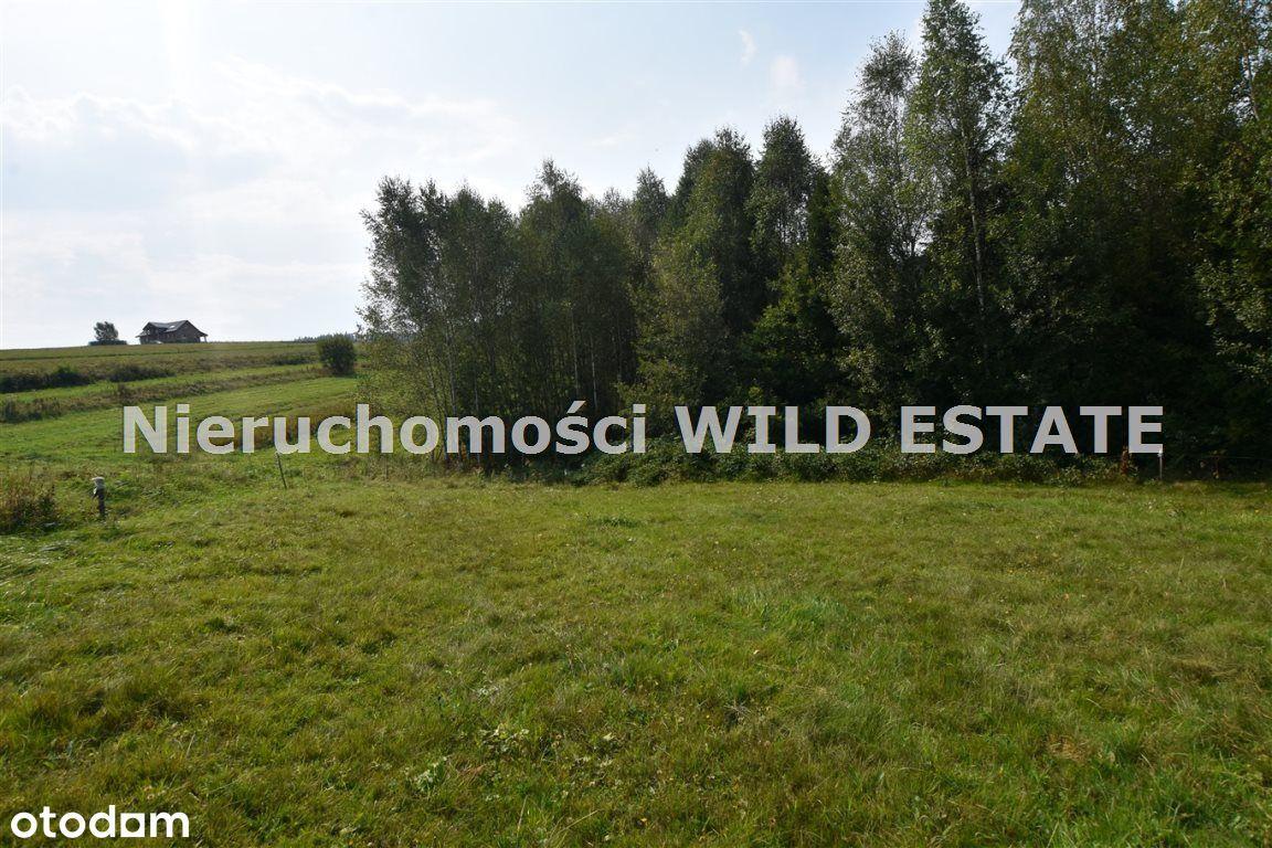 Działka, 3 177 m², Lesko