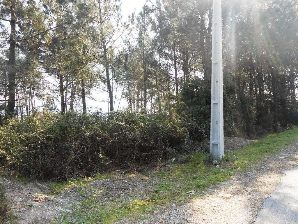 Terreno para comprar, Águas Santas e Moure, Braga - Foto 8