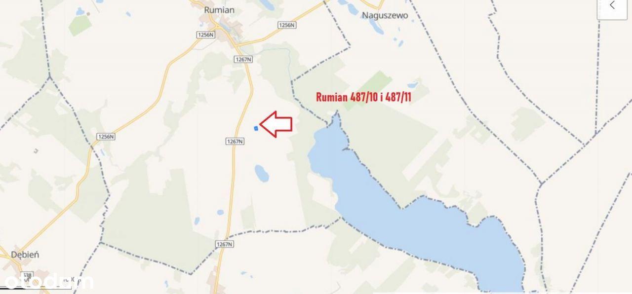 Rumian, gm.Rybno 487/10, 487/11 , 670m2 - Jezioro