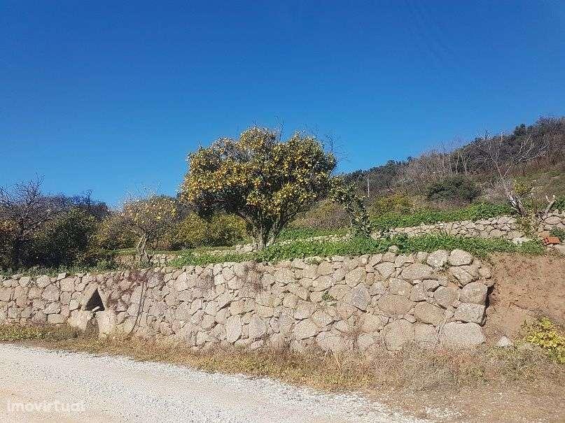 Terreno para comprar, Marmelete, Monchique, Faro - Foto 1