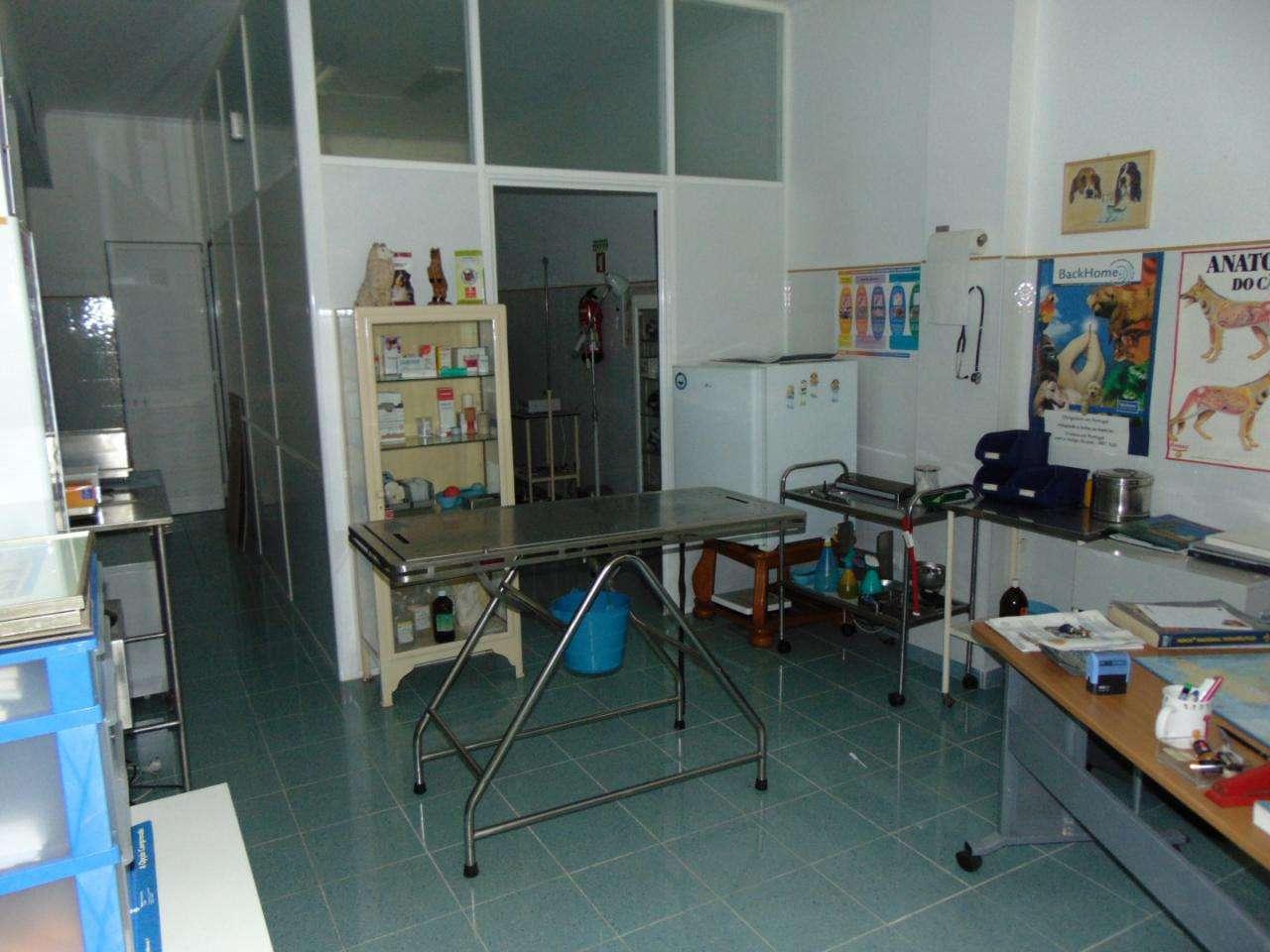 Loja para comprar, Algueirão-Mem Martins, Lisboa - Foto 5