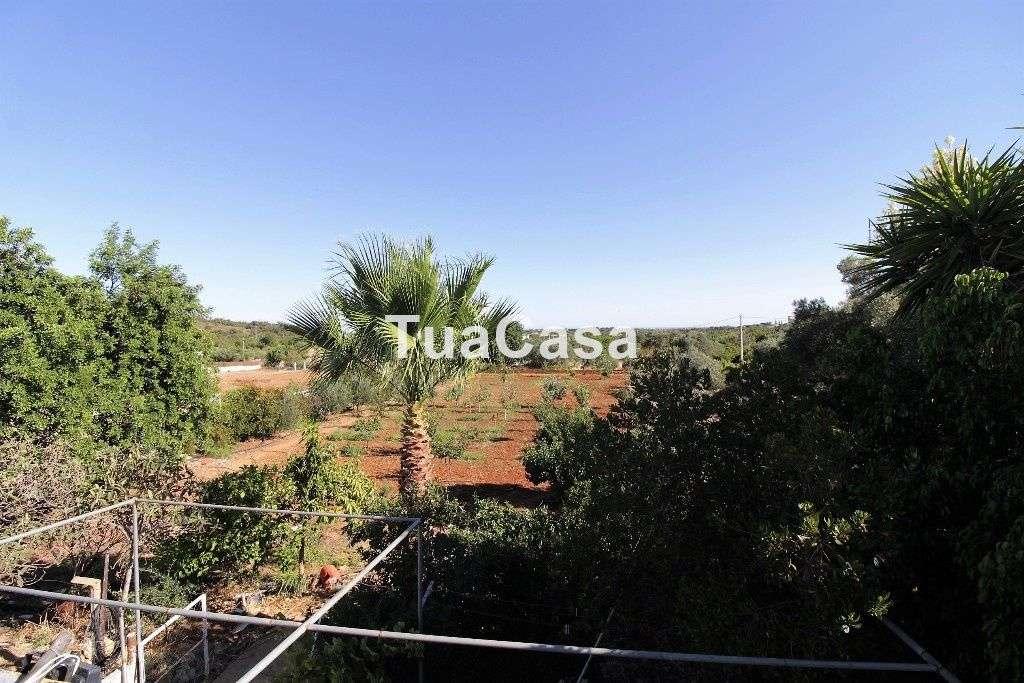 Quintas e herdades para comprar, Moncarapacho e Fuseta, Olhão, Faro - Foto 15