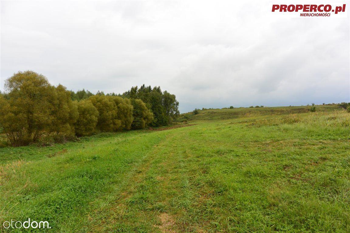 Działka 19 700 m2, Obice, gm. Morawica