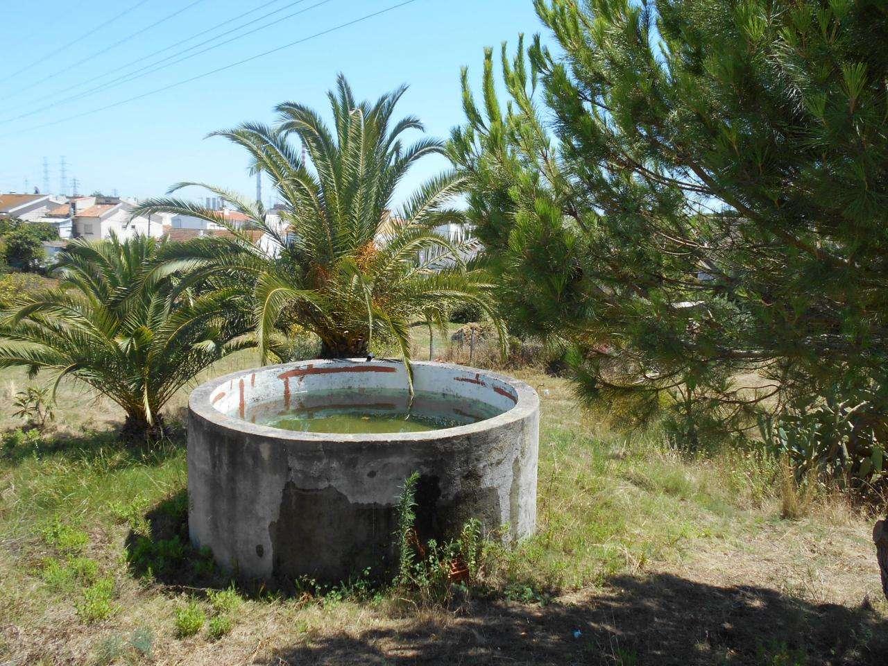 Quintas e herdades para comprar, São Sebastião, Setúbal - Foto 7